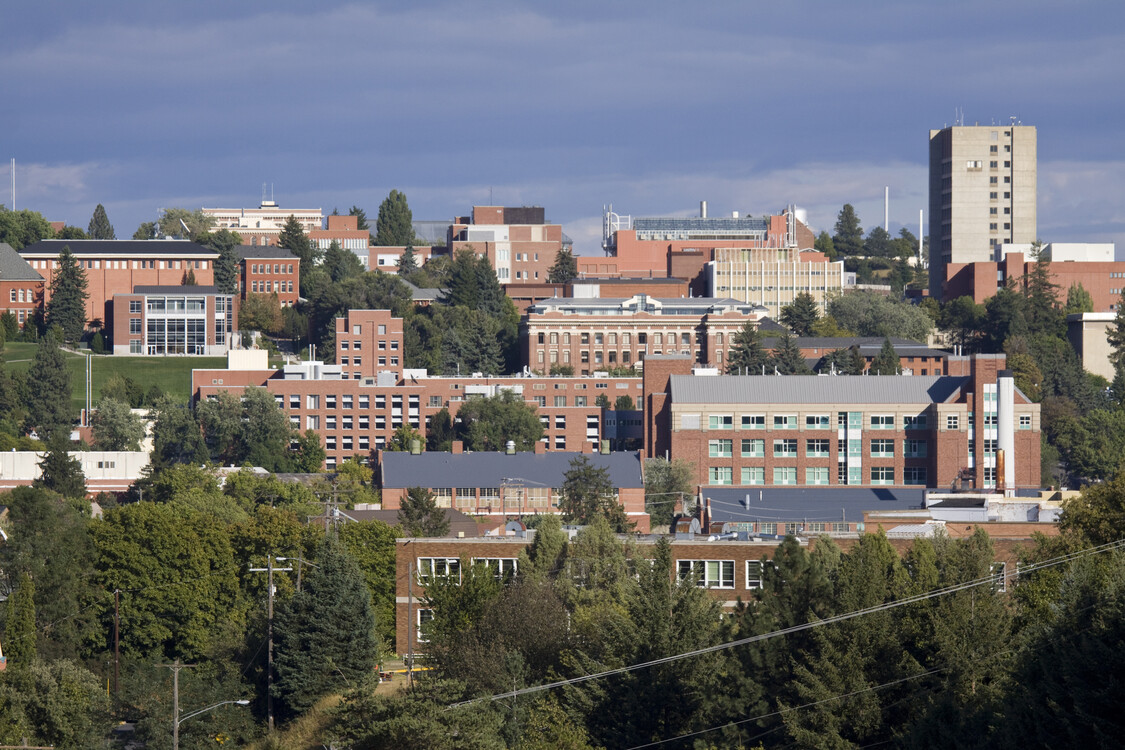 Washington State University, exterior view